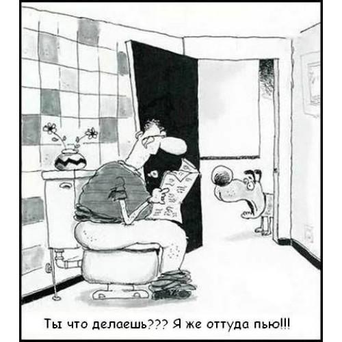 Семейные анекдоты 11